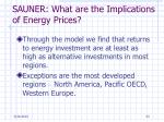 sauner what are the implications of energy prices