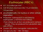 erythrocytes rbc s