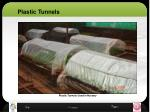 plastic tunnels1