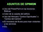 asuntos de opinion
