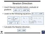 newton direction