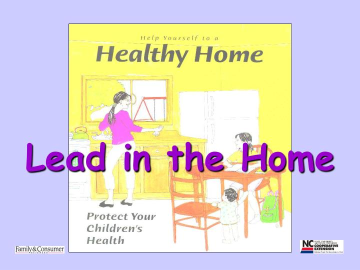 lead in the home n.