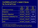samhsa csat s adult clients by level of care