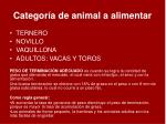categor a de animal a alimentar