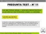 pregunta test n 11
