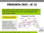 pregunta test n 12