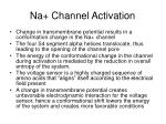 na channel activation