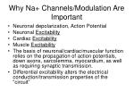 why na channels modulation are important