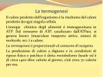 la termogenesi