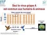 seul le virus grippe a est commun aux humains animaux