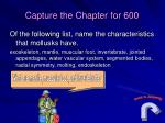 capture the chapter for 600