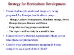 strategy for horticulture development