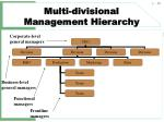 multi divisional management hierarchy