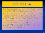 action plan2
