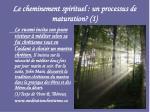 le cheminement spirituel un processus de maturation 1