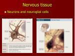 nervous tissue1