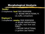 morphological analysis13