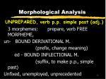 morphological analysis17