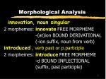 morphological analysis2