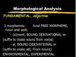 morphological analysis20