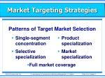 market targeting strategies1