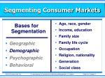 segmenting consumer markets1