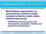 segmenting consumer markets4