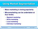using market segmentation