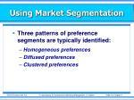 using market segmentation1