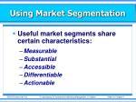using market segmentation3