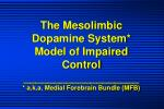 the mesolimbic dopamine system model of impaired control a k a medial forebrain bundle mfb