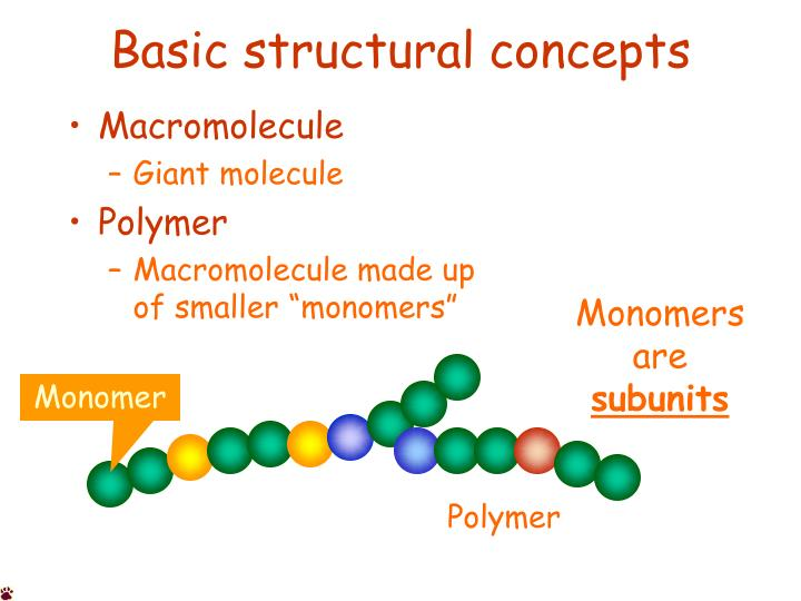 basic structural concepts n.