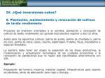iv qu inversiones cubre 8 plantaci n mantenimiento y renovaci n de cultivos de tard o rendimiento