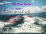 vii conclusion1