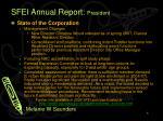 sfei annual report president