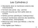 les cylindres