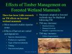 effects of timber management on forested wetland mammals
