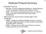 multicast protocol summary