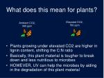 what does this mean for plants