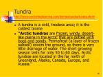 tundra http www enchantedlearning com biomes tundra tundra shtml