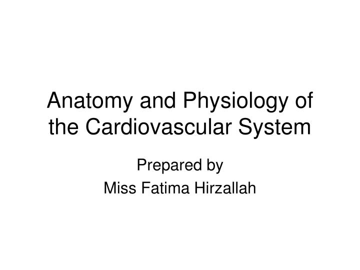 anatomy and physiology of the cardiovascular system n.