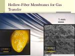 hollow fiber membranes for gas transfer