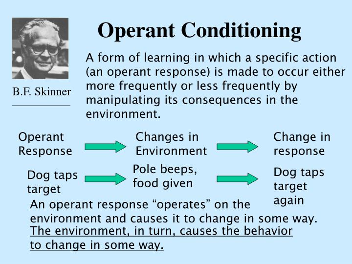 operant conditioning n.