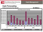 cash forecasting disbursements by month