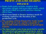 profit and loss sharing finance