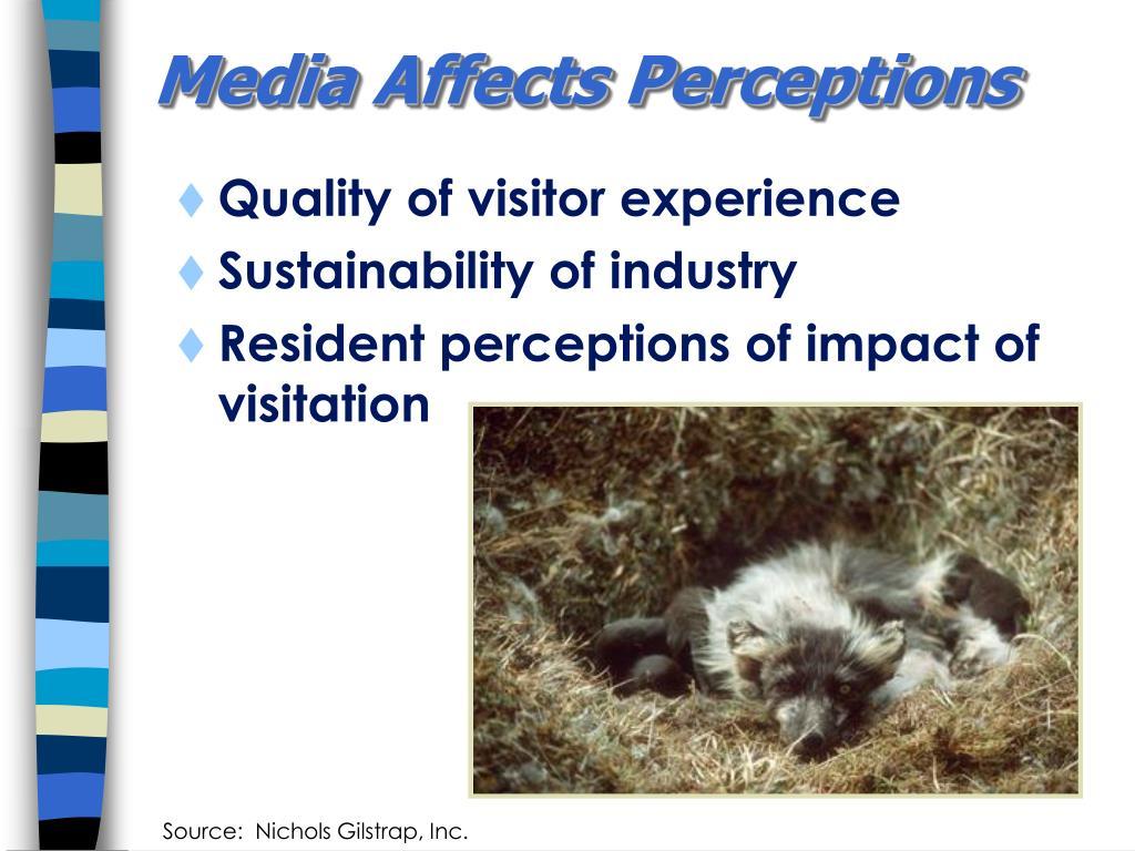 Media Affects Perceptions
