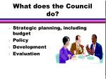 what does the council do