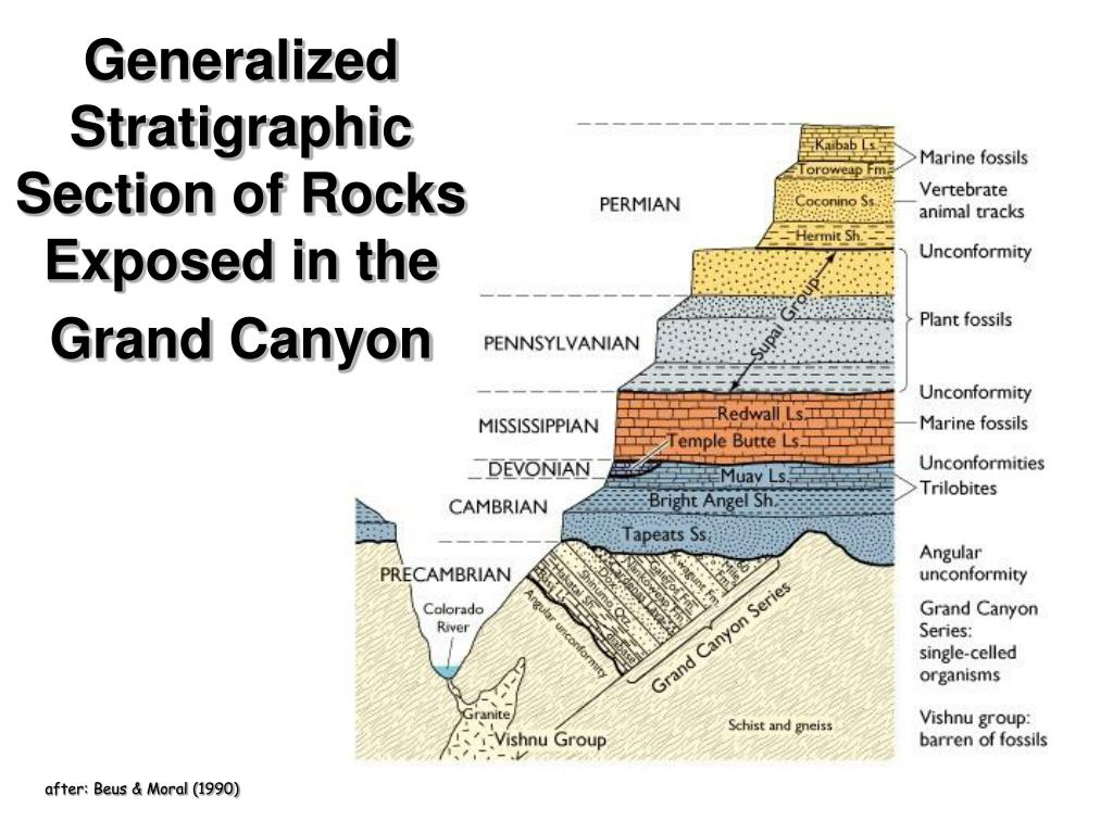 Generalized Stratigraphic Section of Rocks Exposed in the Grand Canyon