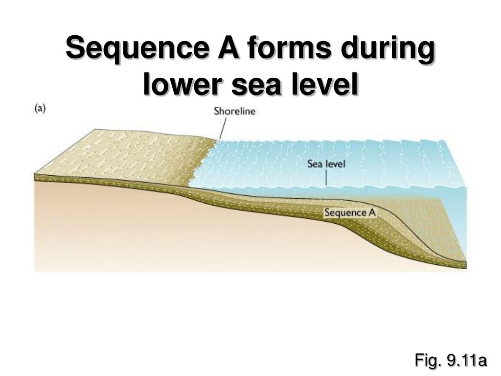 Sequence A forms during lower sea level