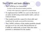the capm and index models